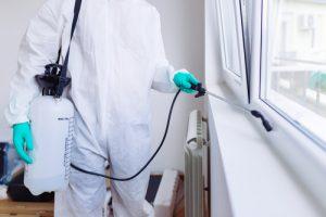 3 Tips for Preventing Pest Infestations in Rentals